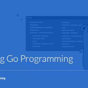 Mastering Go Programming