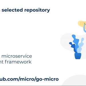 Go micro: A microservice development framework