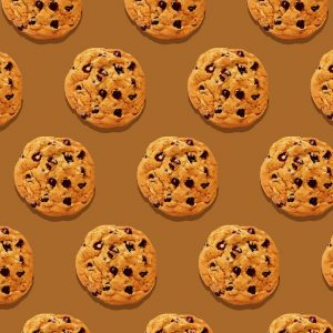 Introduction to HTTP Cookies